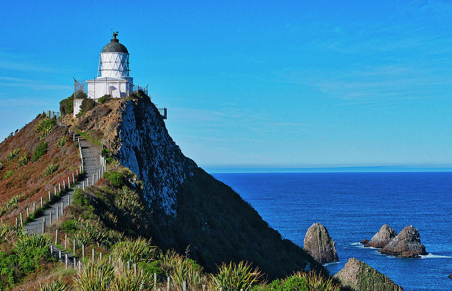 Nugget Point Lighthouse 4 - Catlins - New Zealand by Steven Ralser