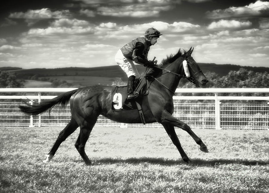 Number 9 Goodwood Races by Jack Torcello