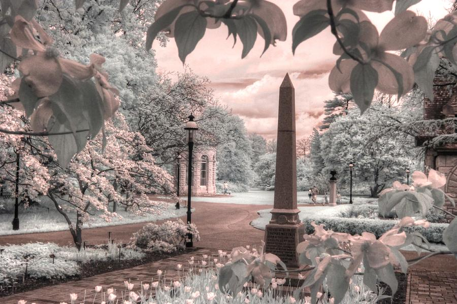 Nuttall Obelisk Missouri botanical garden st louis infrared  by Jane Linders