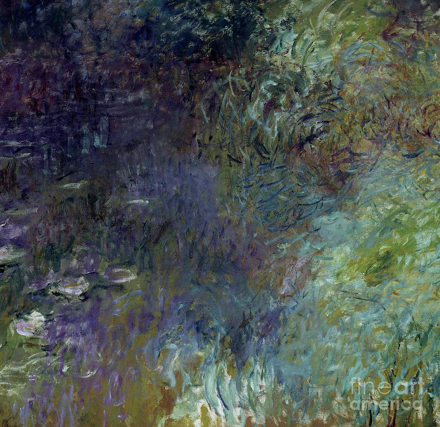 Claude Monet Painting - Nympheas, Matin By Monet by Claude Monet
