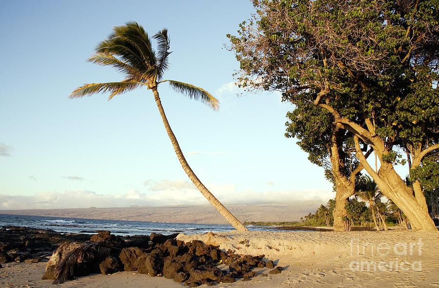 Oahu, Hawaii, 2005 by Carol Highsmith