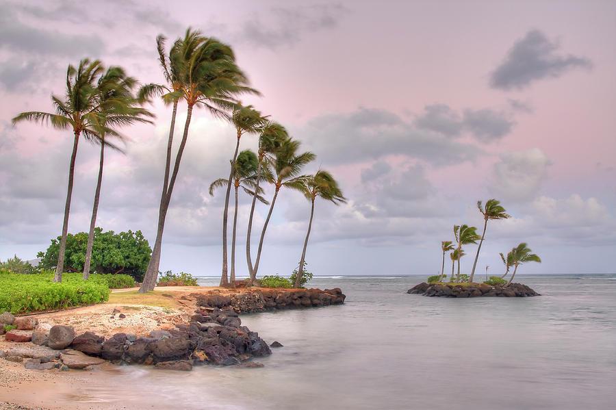 Oahu Island Seascape Photograph by (c) Loco Moco Photos