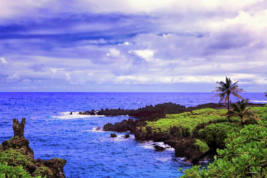 Oahu lookout by Tom Prendergast