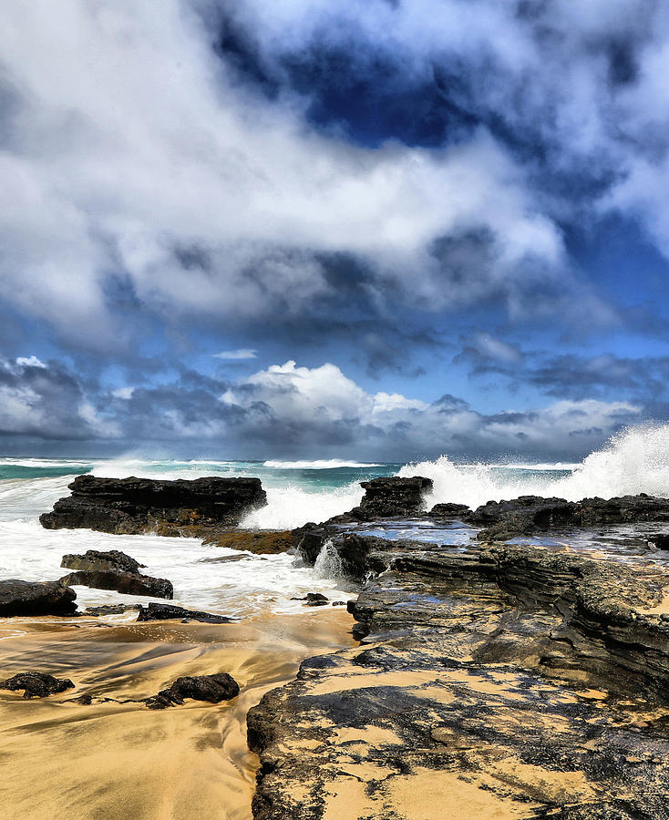 Oahu Shoreline by Donald J Gray