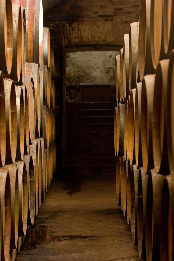 Oak Barrels At The Wine Cellar Photograph by Kycstudio