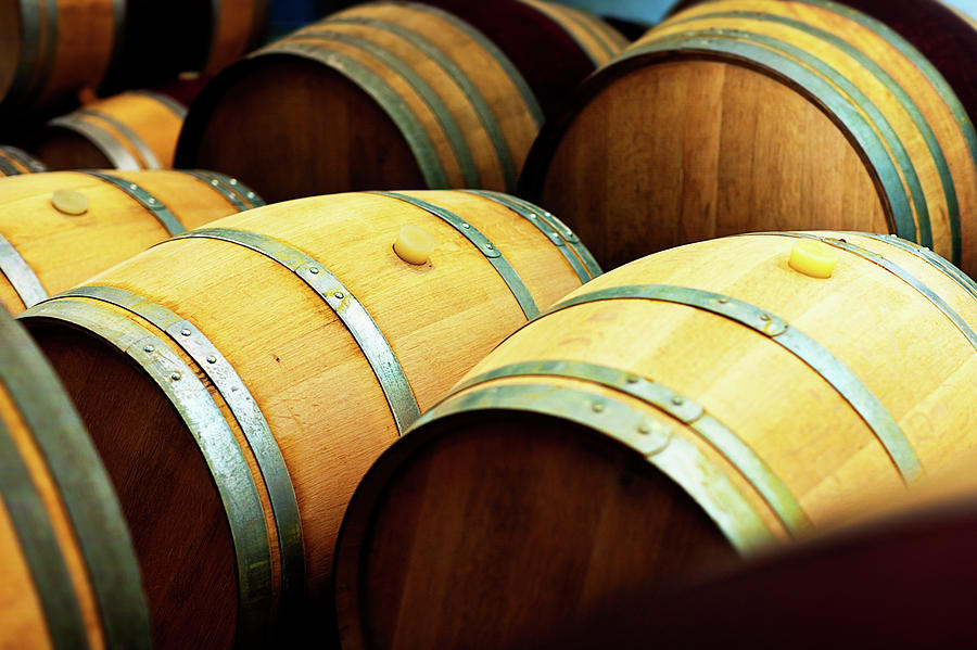 Oak Barrels For Maturing Wine At A Photograph by Rapideye