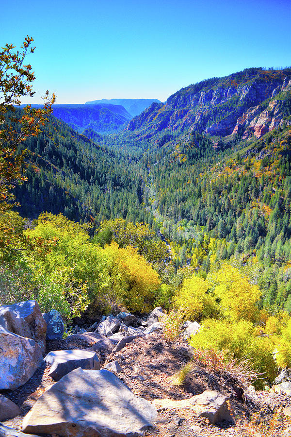 Oak Creek Canyon Autumn  by Chance Kafka