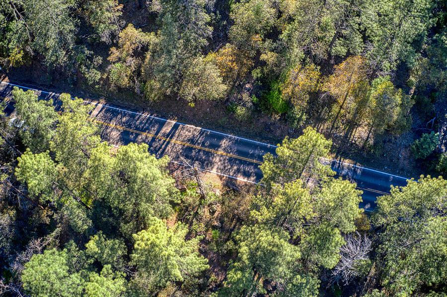 Oak Trees Sedona, AZ by Ants Drone Photography