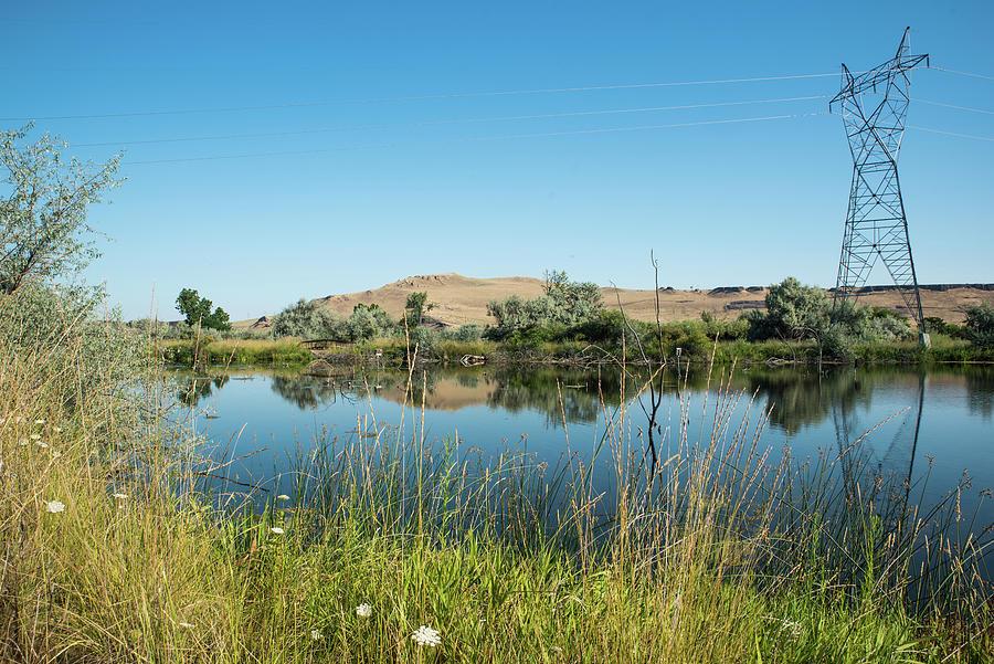 Oasis Near McNary Dam by Tom Cochran