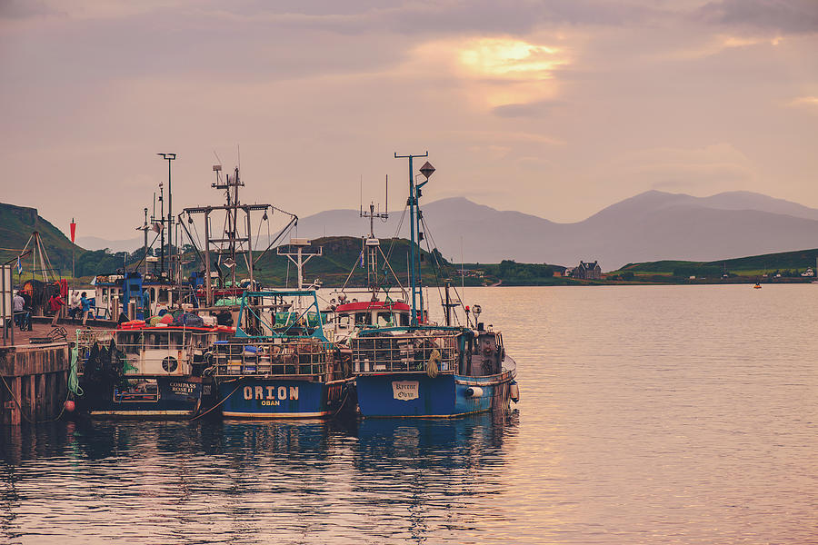 Oban Harbour Sunset by Ray Devlin