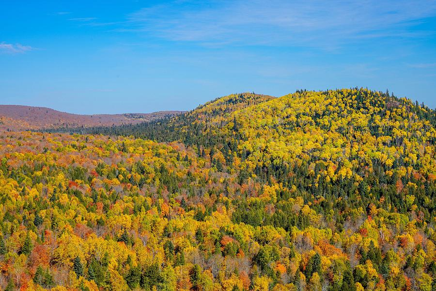 Oberg Mountain in Autumn by Susan Rydberg