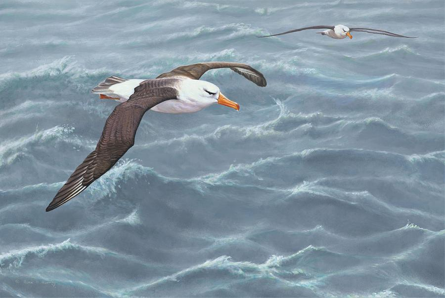 Paintings Painting - Ocean Flight Seabirds By Alan M Hunt by Alan M Hunt