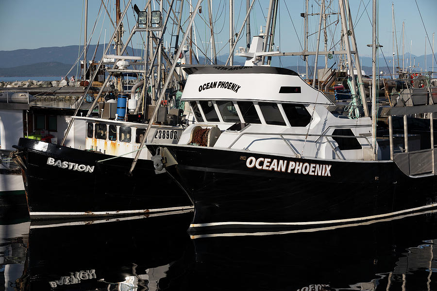 Ocean Phoenix And Bastion Photograph