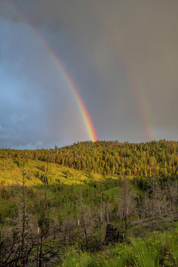 Ochoco Divide Rainbow  by Matthew Irvin