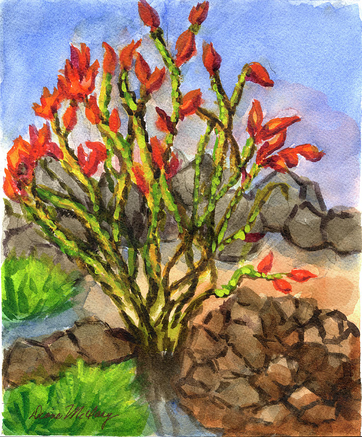 Ocotillo by Diane McClary