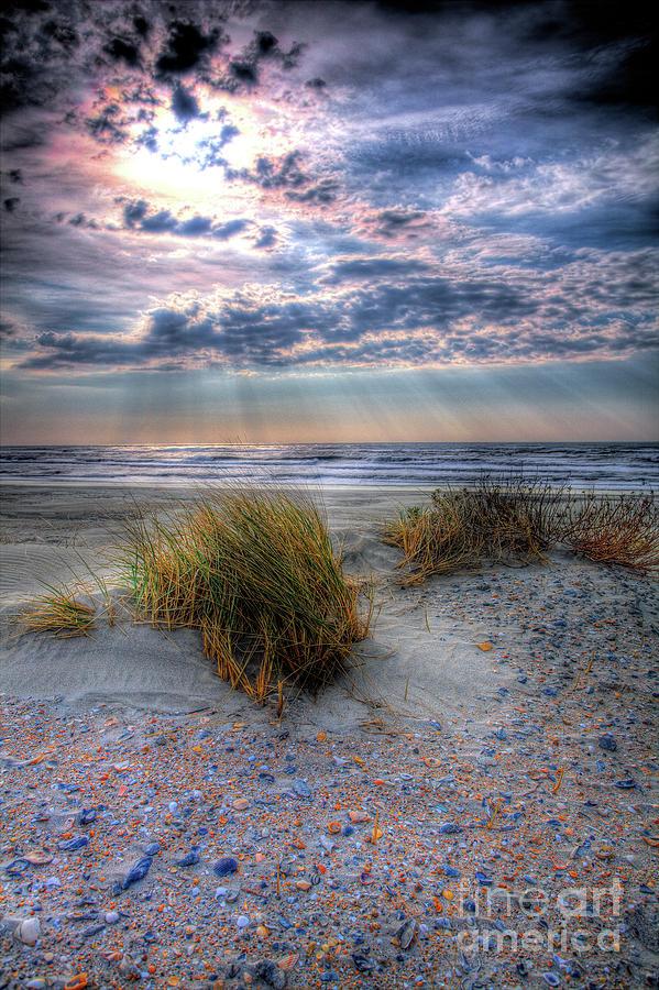 Ocracoke Winter Dunes V by Dan Carmichael