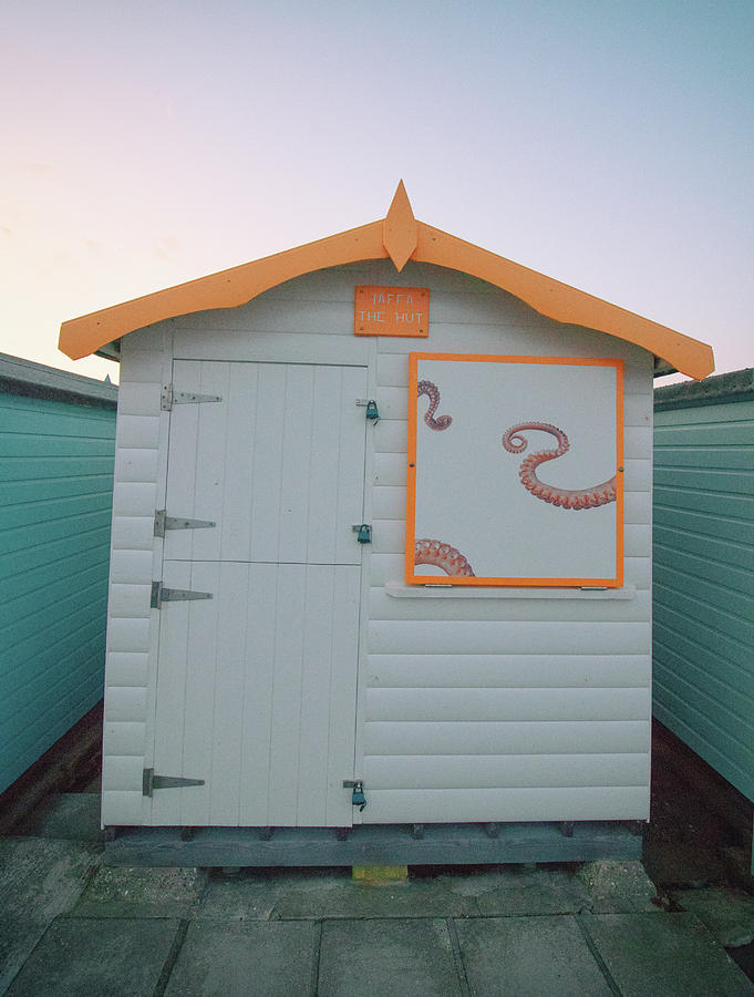 Octo Hut by Martin Newman