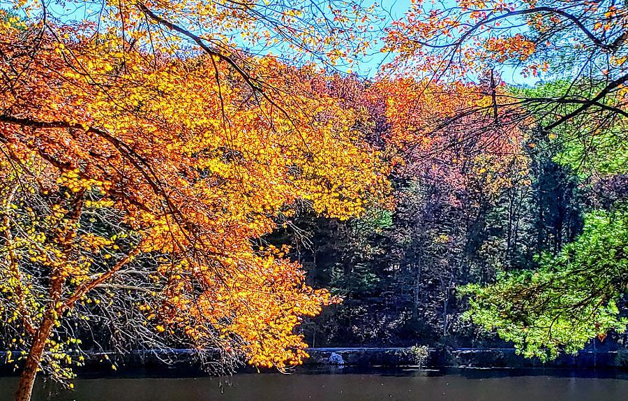 October at Laurel Lake  by Paul Kercher