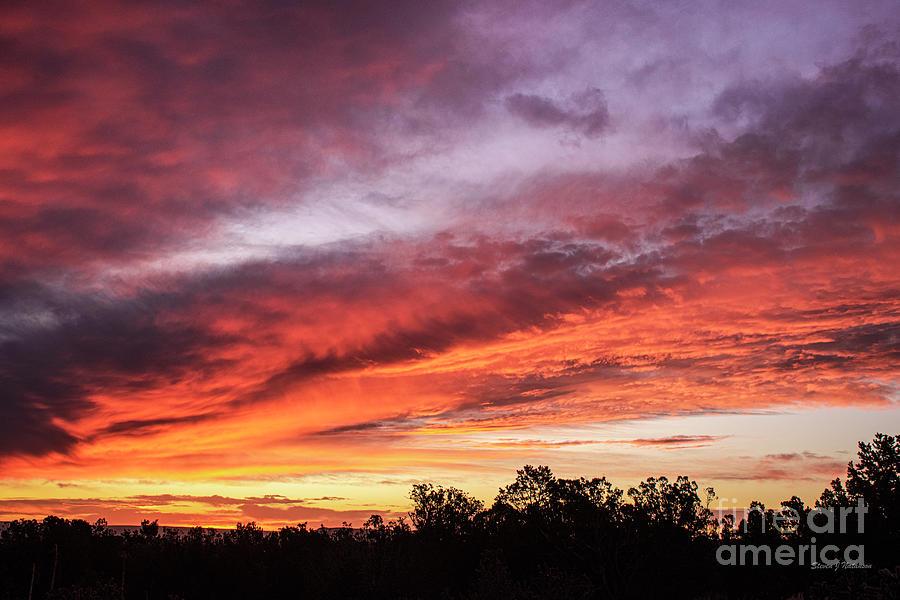 October Dawn by Steven Natanson