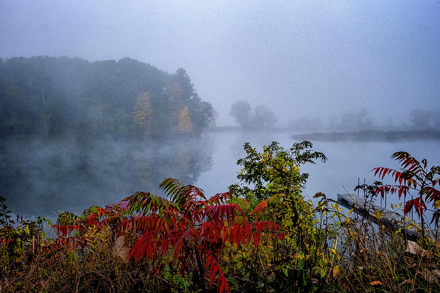 October Fog II by Tom Singleton