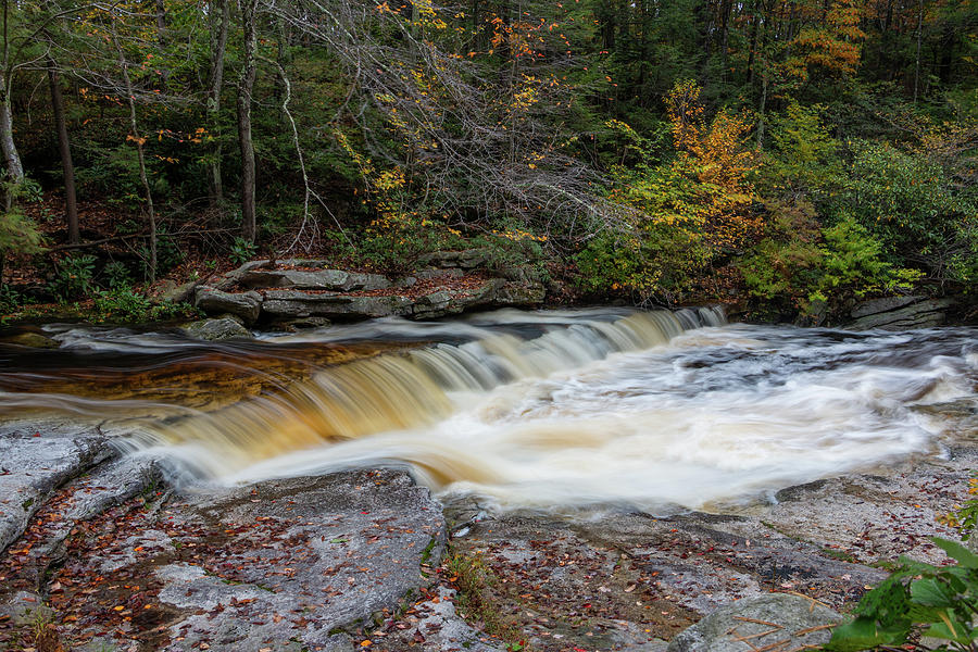 Stream Photograph - October Morning on the Peterskill by Jeff Severson