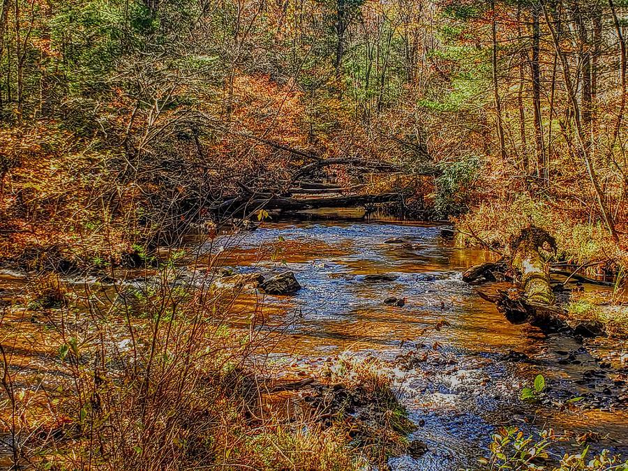 October on Mountain Creek  by Paul Kercher