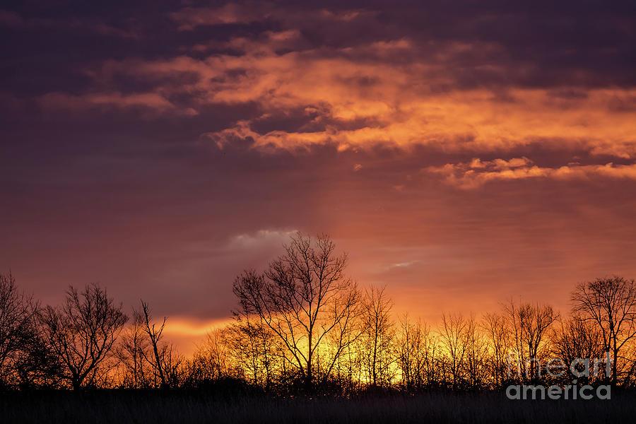 October Sunrise by Cheryl Baxter