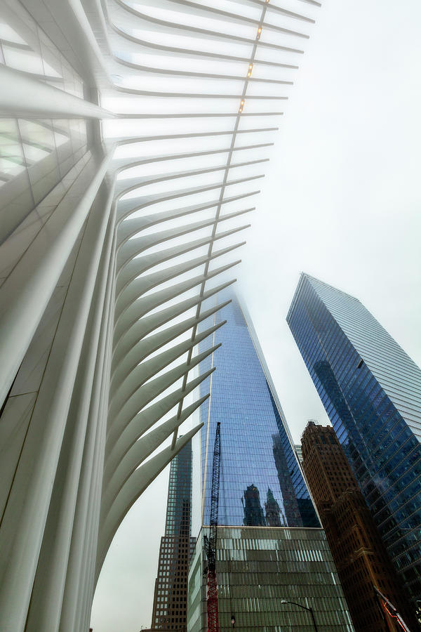 Oculus and One World Trade Center by Kay Brewer
