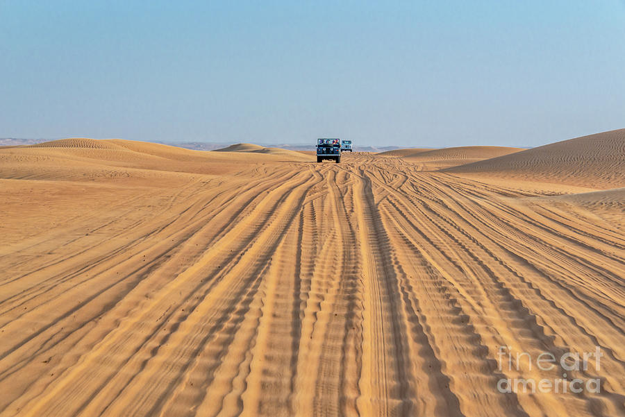 Desert Photograph - Off Road In The Desert by Delphimages Photo Creations