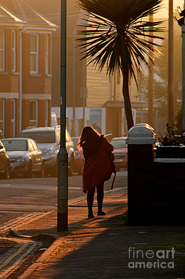 Off To Work Photograph - Off to Work by Andy Thompson
