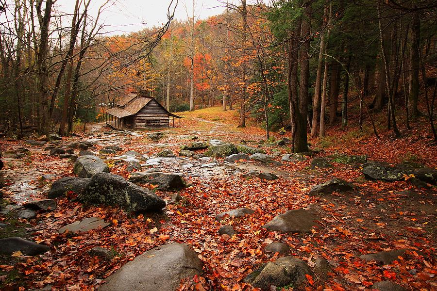 Ogle's Cabin in Autumn by Kevin Wheeler