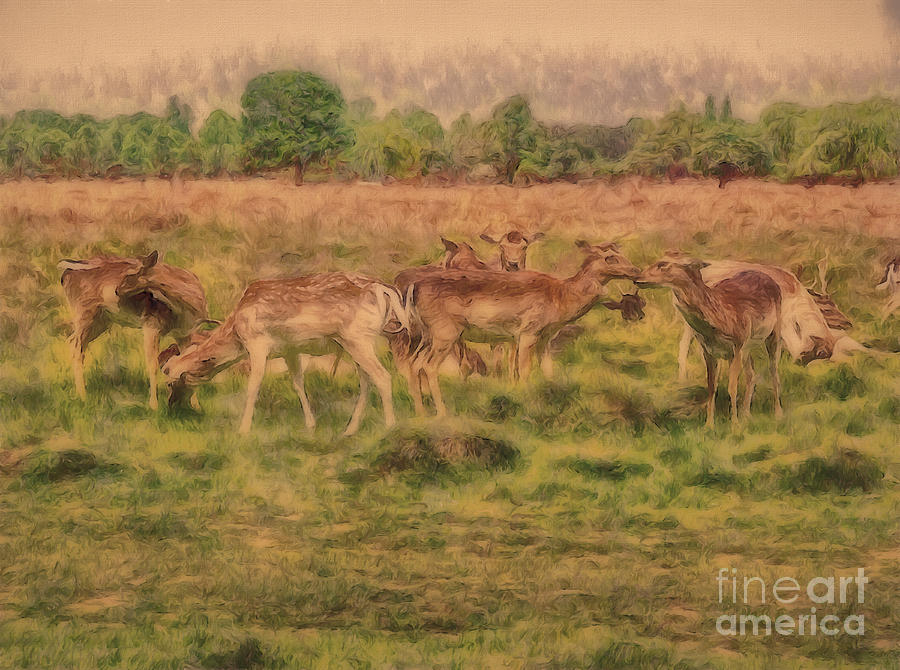 Oh Deer by Leigh Kemp