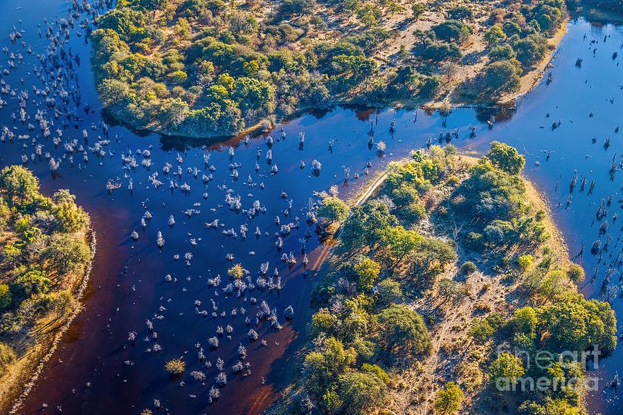 Delta Photograph - Okavango Delta Okavango Grassland Is by Vadim Petrakov