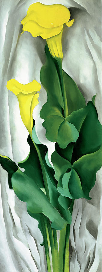 Nature Mixed Media - Okeefe-yellow Calla by Portfolio Arts Group