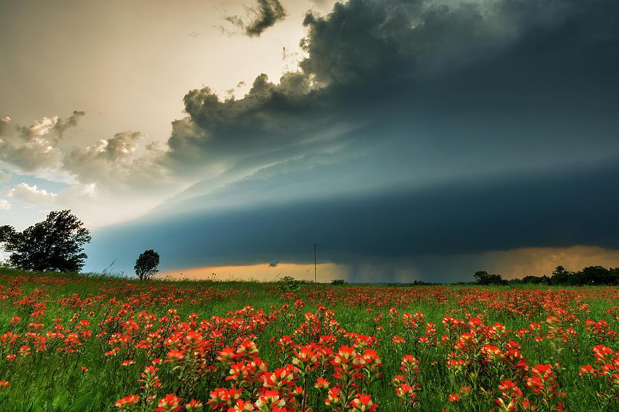 Oklahoma Tornado Storm Photograph by John Finney Photography