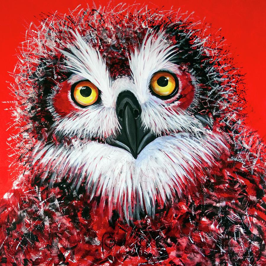 OL Owlet by Laurel Bahe