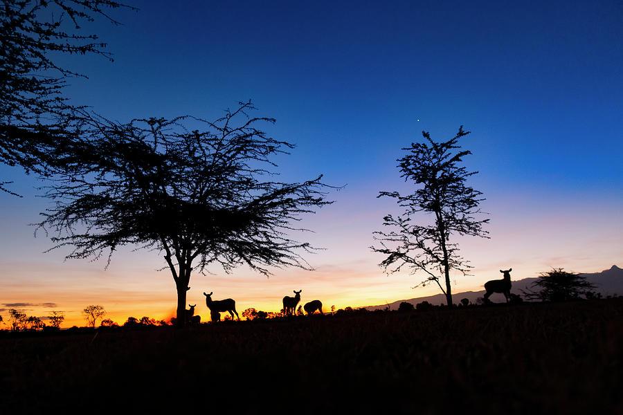 Ol Pegeta Sunset by Philip Rispin