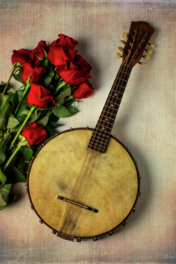 Banjos Photograph - Old Banjo And Roses by Garry Gay