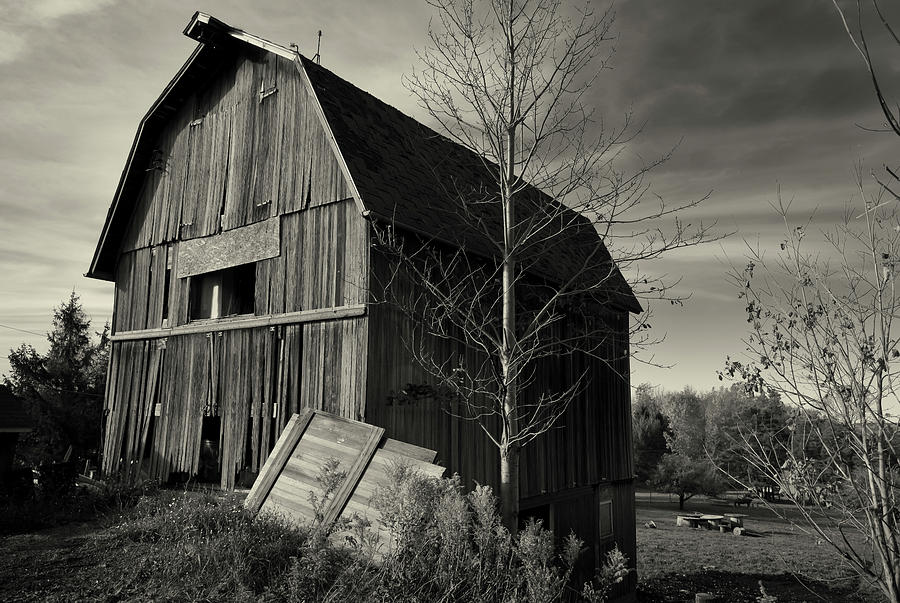 Black And White Photograph - Old Barn Autumn B&w by Anthony Paladino