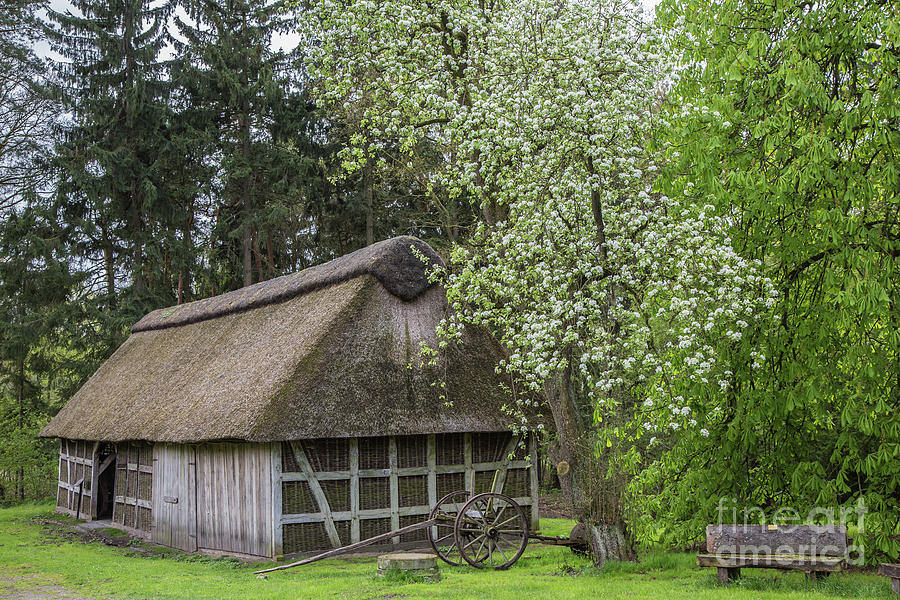 Old Barn in Spring by Eva Lechner