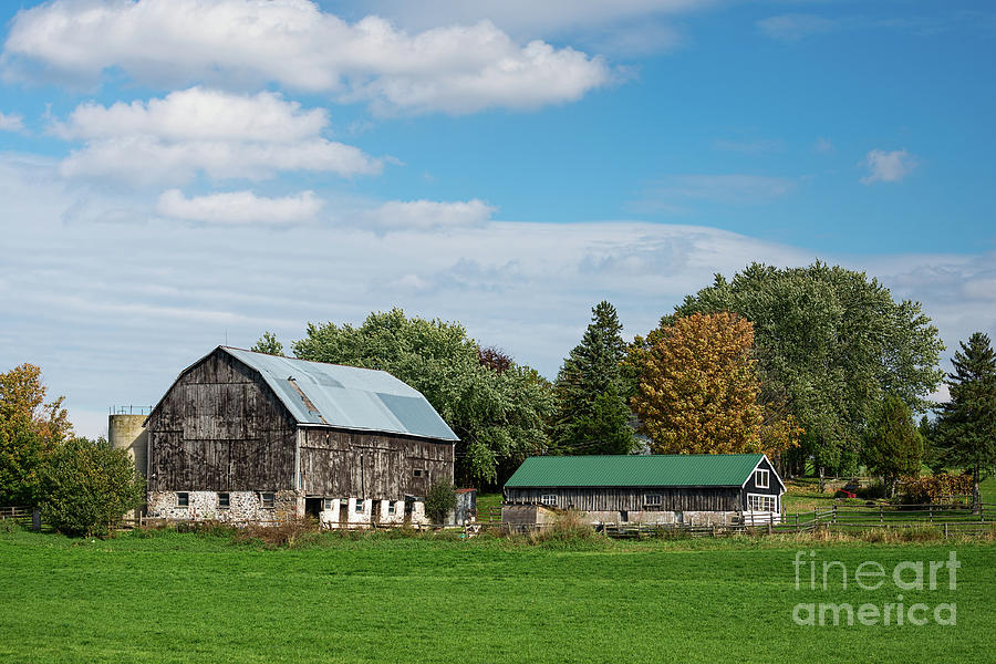 Old barns with green roofs by Les Palenik
