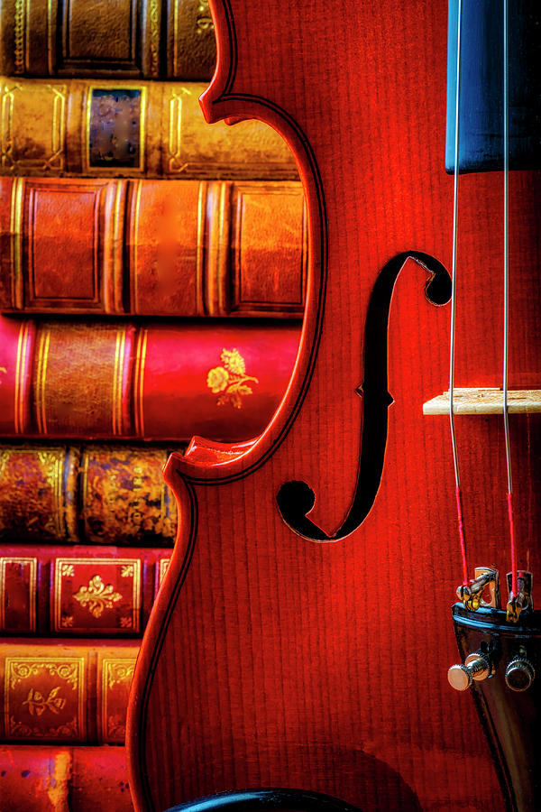 Old Photograph - Old Books And Violin Close Up by Garry Gay