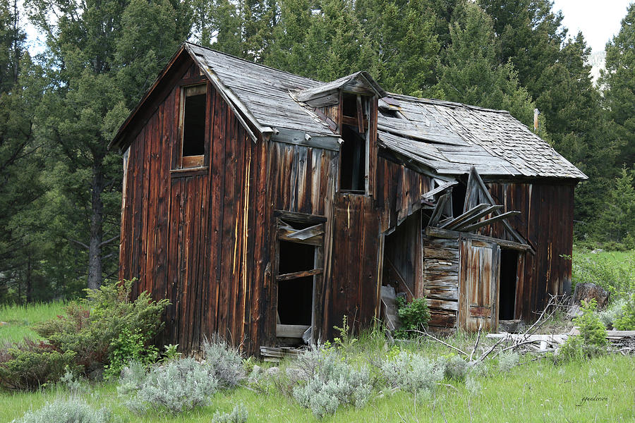Old Cabin - Elkhorn, MT by Gary Gunderson