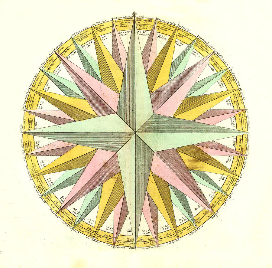 Old Compass Rose Digital Art by Nicoolay