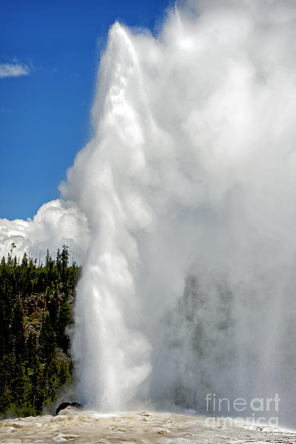 Nature Photograph - Old Faithful with Steam and Vapor by Lincoln Rogers
