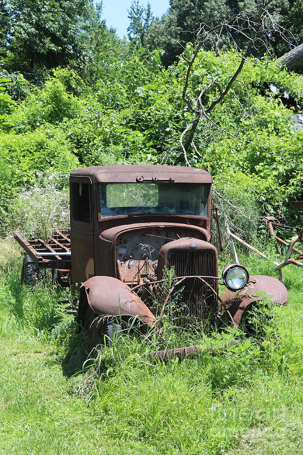 Old Ford sitting in the woods by Dwight Cook