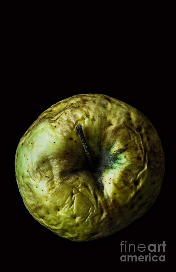 Fruit Photograph - Old Green Wrinkled Apple Close Up Macro by Pinkyone