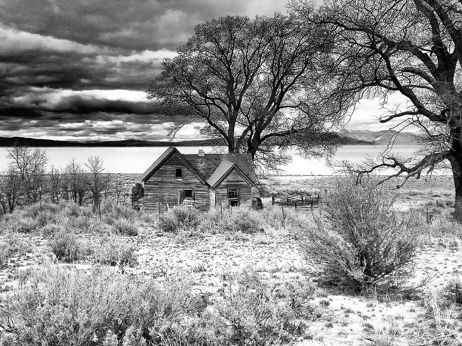 Old Homestead at Honey Lake by Dominic Piperata