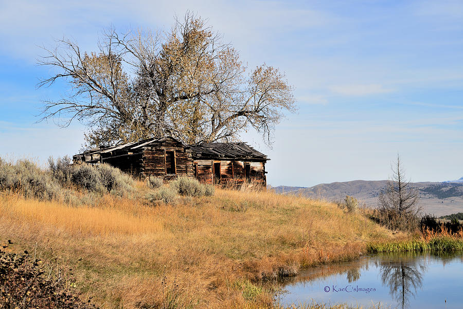 Old Homestead by Pond by Kae Cheatham