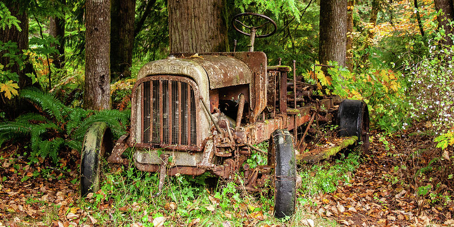 Old Logging Equipment-1 by Claude Dalley